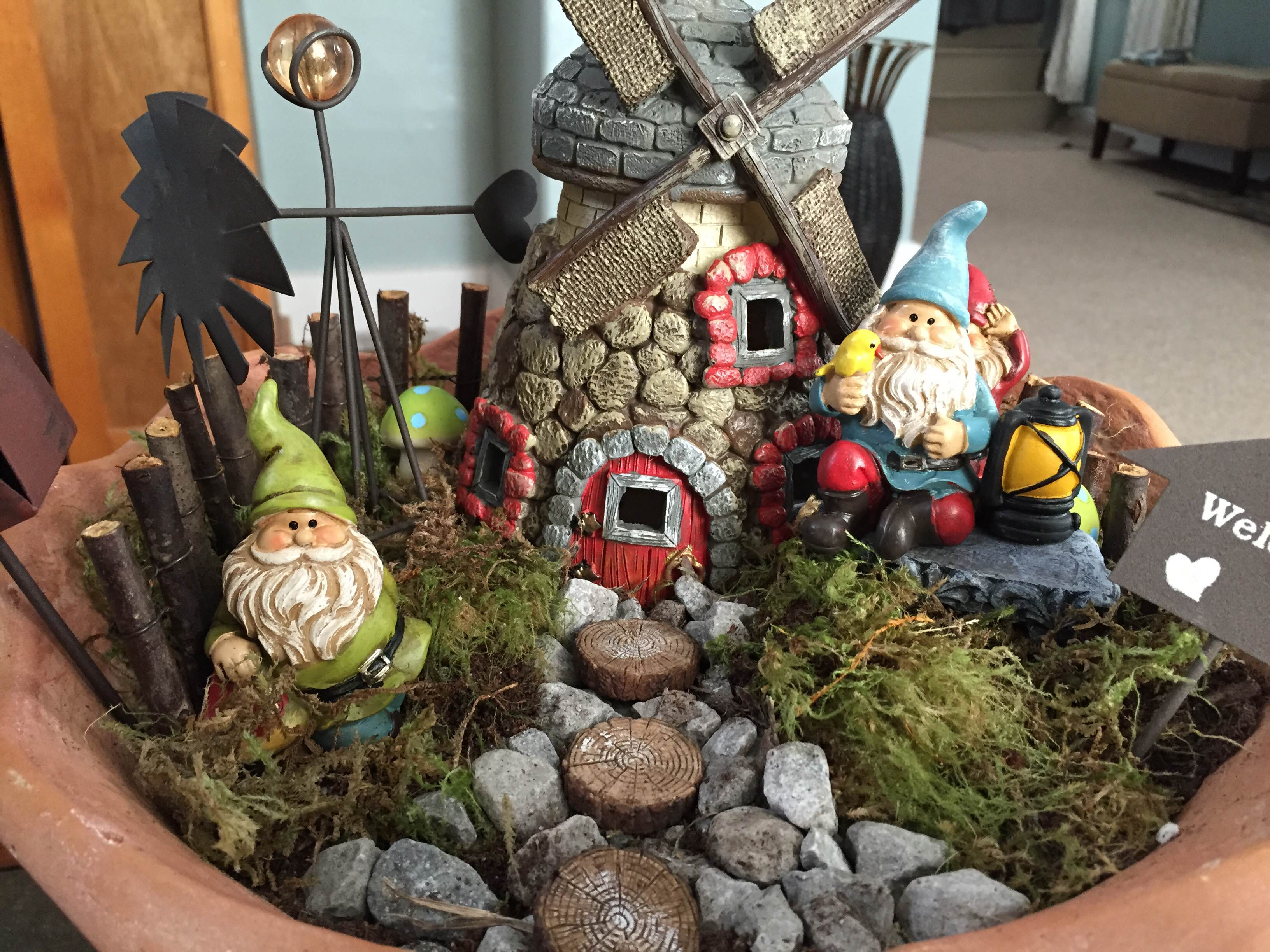 Mini Gnome Garden A Pinch Of Variety